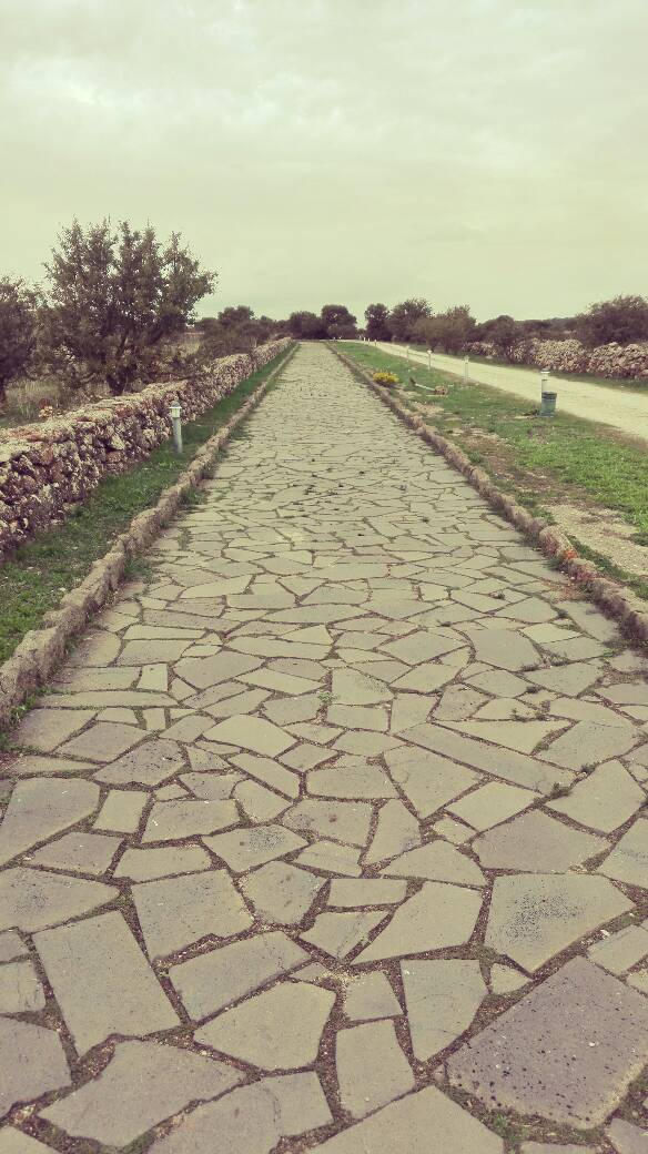 zona archeologica orroli