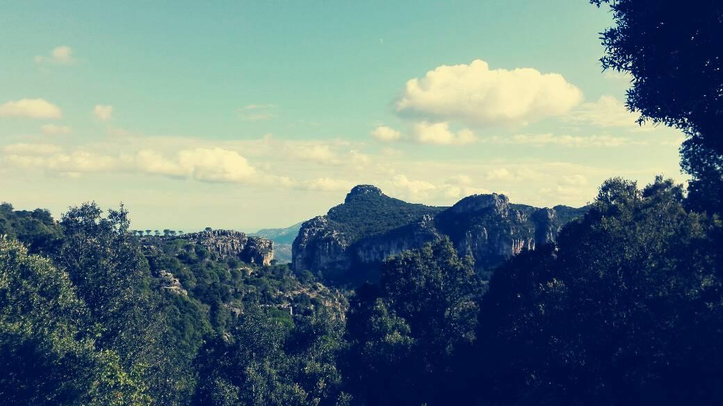 montagne oliastra